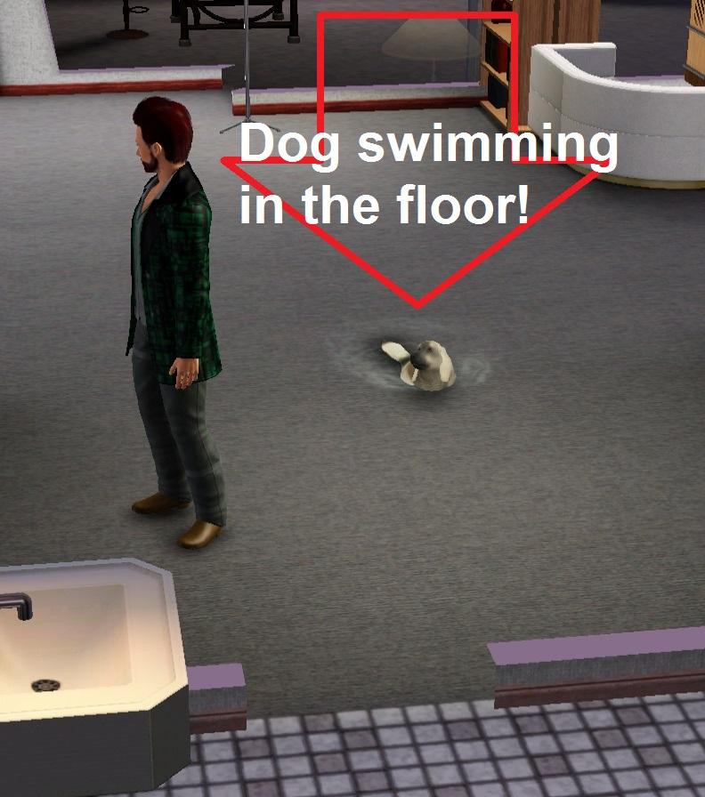 Funny Screenshots - Page 30 Dogflo10