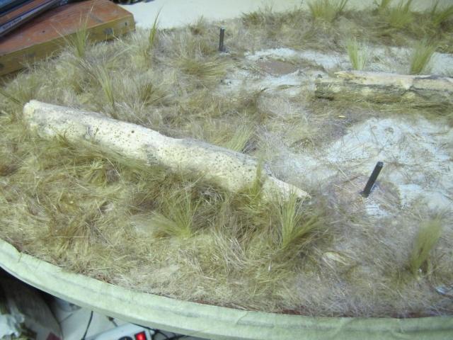 brachiosaure Jurassic Park 1/19  - Page 3 Img_3011
