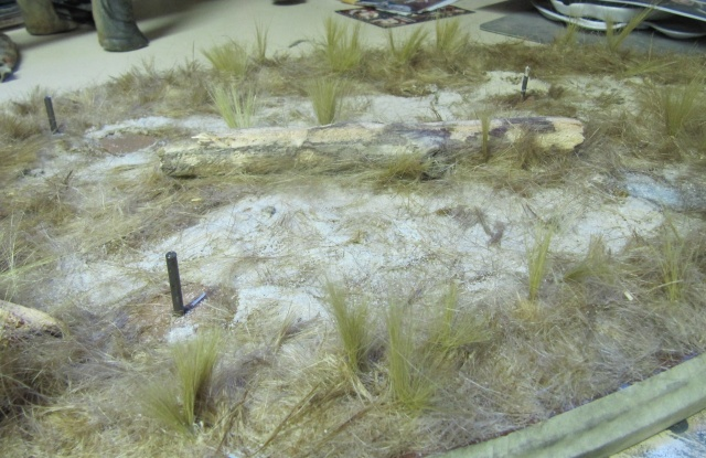 brachiosaure Jurassic Park 1/19  - Page 3 Img_3012