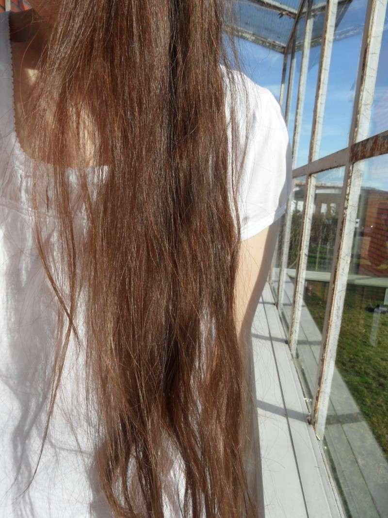 Cheveux secs et abîmés Sam_3011