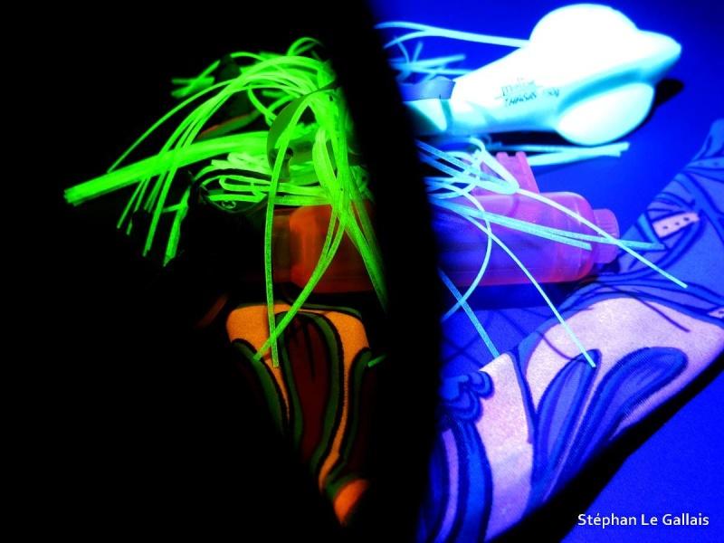 Projet Fluorescence avec la lampe de Screech Ffluo510