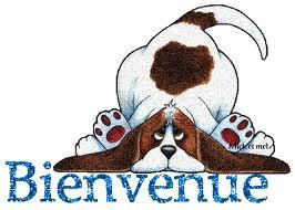 présentation oliveMC Bienve11
