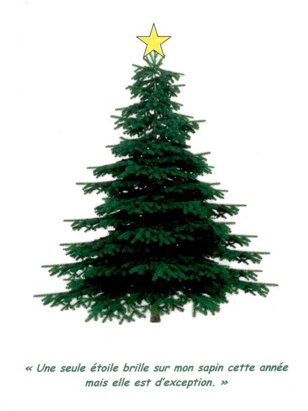 Un joyeux Noël à toutes et tous Sapin_10