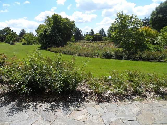 Parc floral - La Roseraie Rosera14
