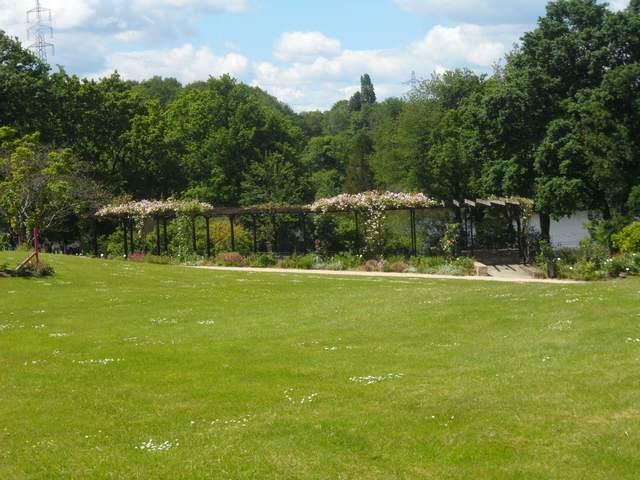 Parc floral - La Roseraie Rosera15