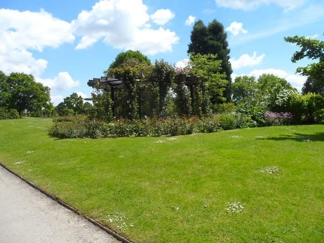 Parc floral - La Roseraie Rosera17