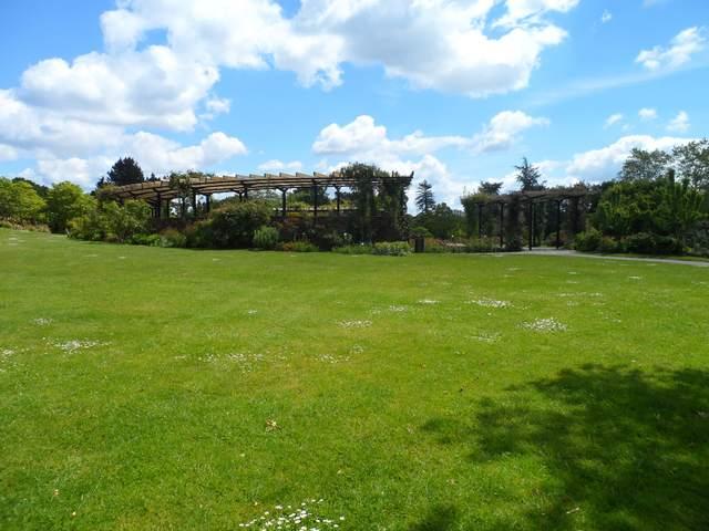 Parc floral - La Roseraie Rosera21
