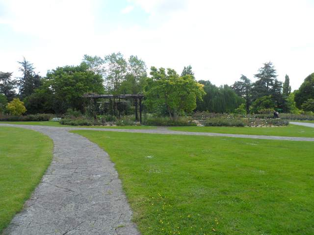 Parc floral - La Roseraie Rosera23