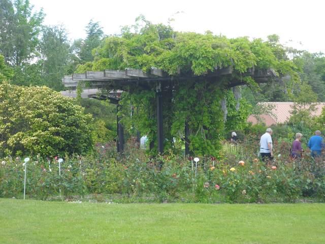 Parc floral - La Roseraie Rosera24