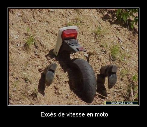Photos comiques divers... Moto-v10