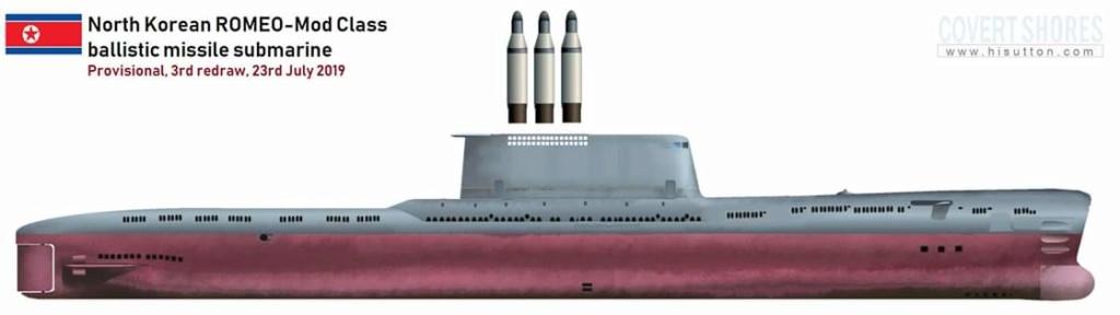 Corée du Nord : sous-marin lance-missile balistique - Page 2 Fb_img13