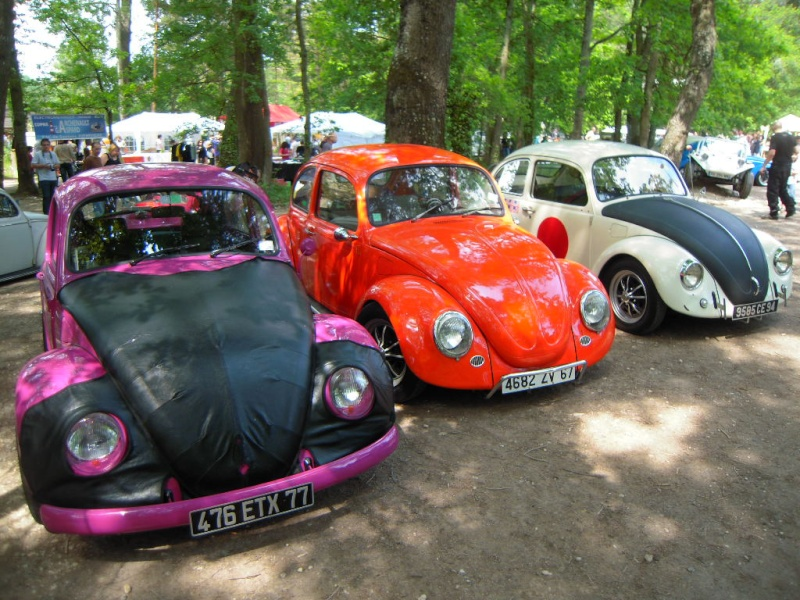 VW AIRCOOLED Buthie10