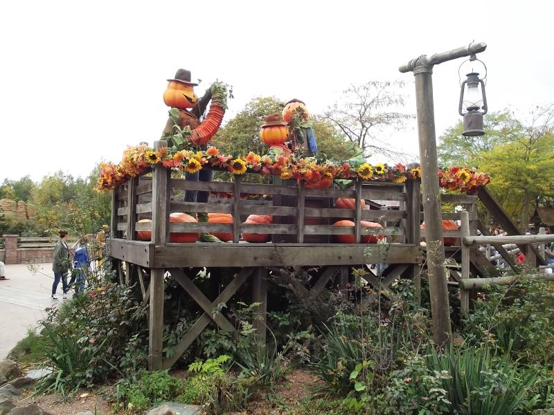 Séjour au séquoia aux couleurs d'automne Dscf1730
