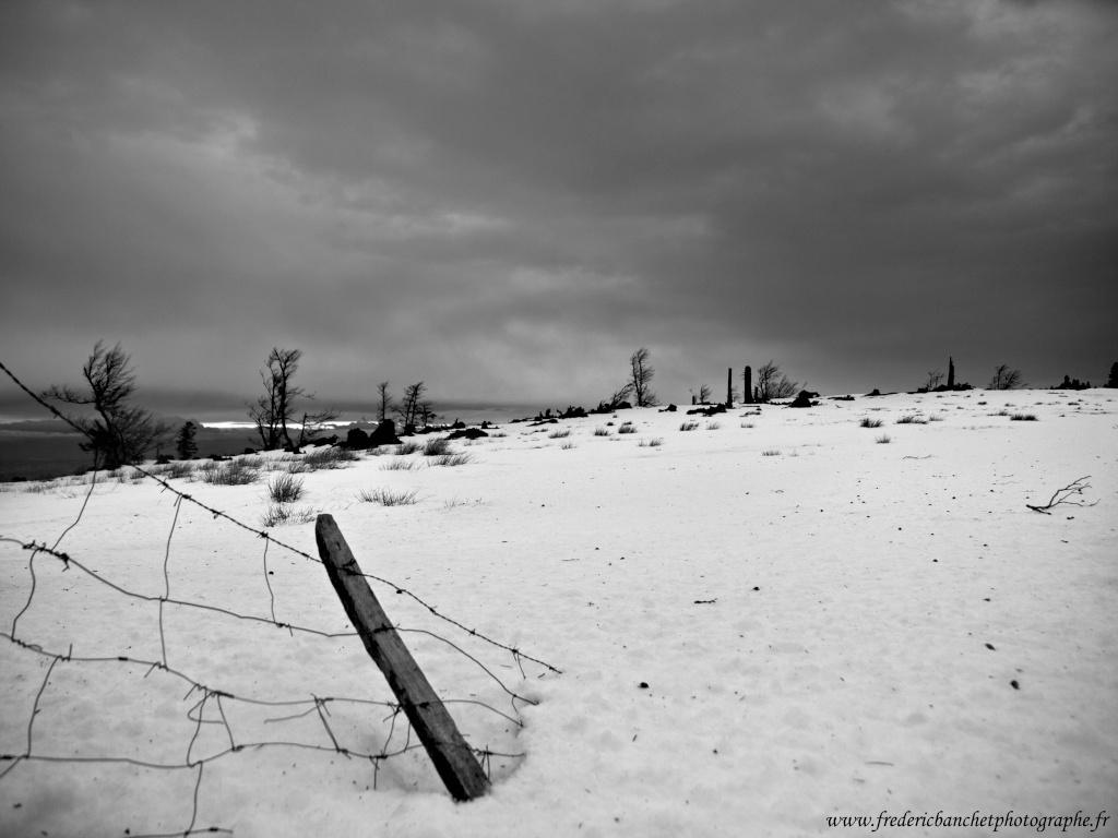 neige blanche / nuages noirs Neige_10