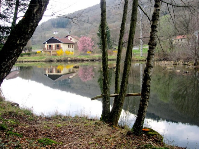 Dans la vallée de Grandrupt Au_bor10