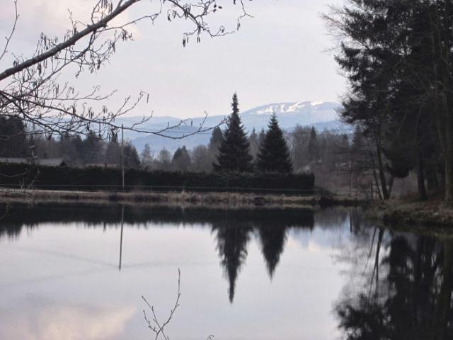 Dans la vallée de Grandrupt Neige_10