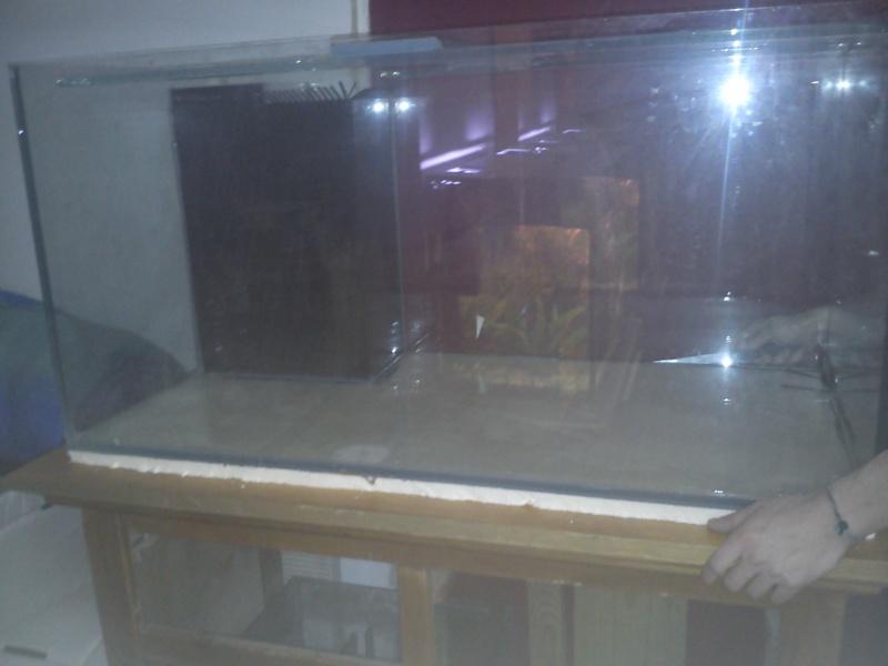 mon premier aquarium 240 brut avec installation de la  décante  Dsc_0310