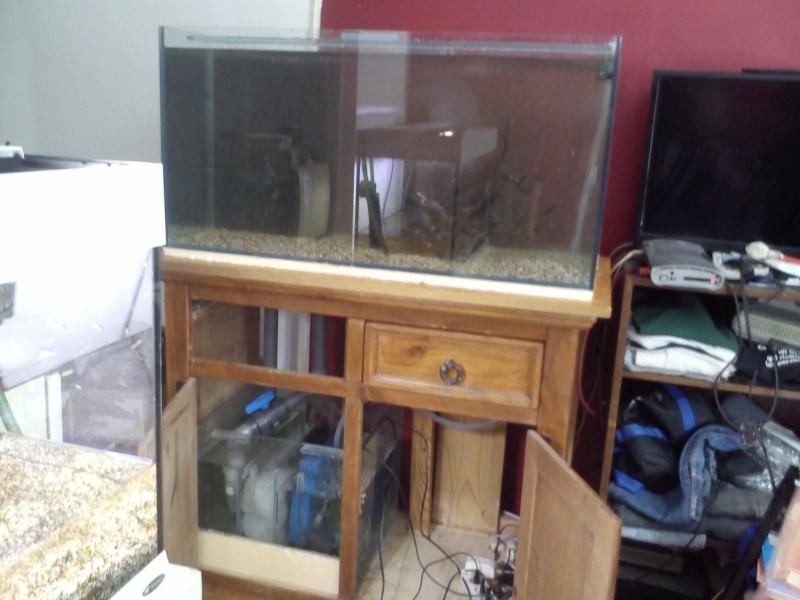 mon premier aquarium 240 brut avec installation de la  décante  Dsc_0311