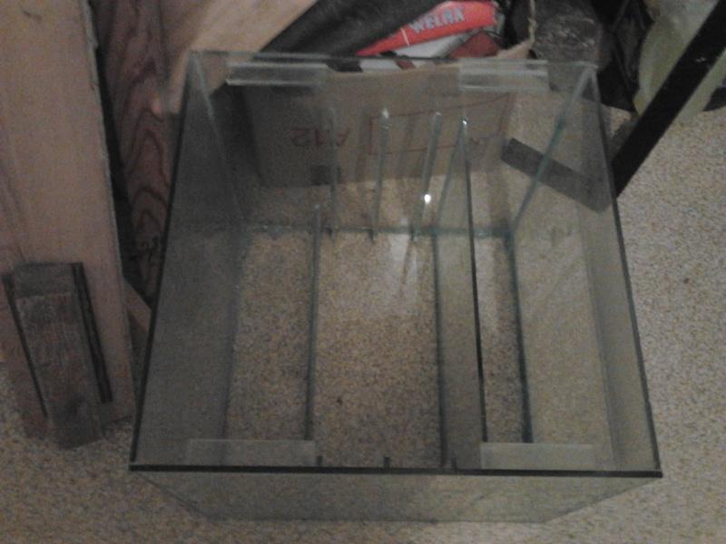 mon premier aquarium 240 brut avec installation de la  décante  Photo012