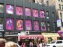 NEW YORK NEW YORK Times_19