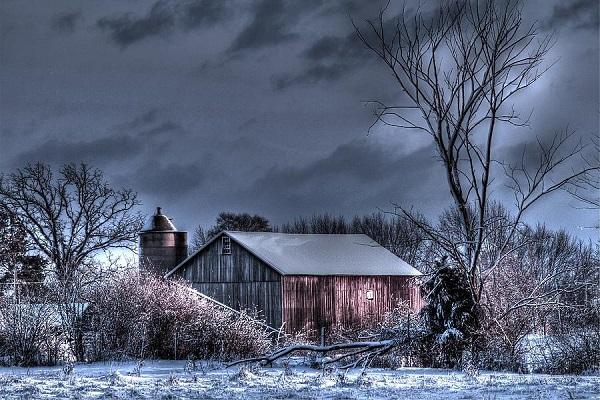 Bon Mercredi Winter15