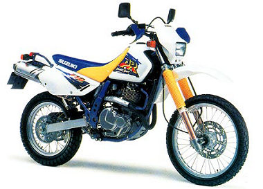Question fourche ou plutot protection Suzuki10