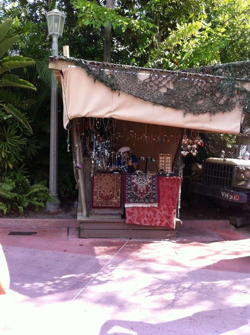 5 Auvergnats en Floride - Universal Busch Gardens et WDW Octobre 2013 - Page 6 Nokia165