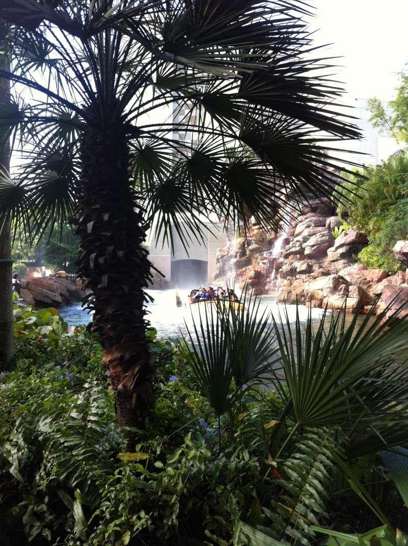 5 Auvergnats en Floride - Universal Busch Gardens et WDW Octobre 2013 - Page 2 Nokia_34
