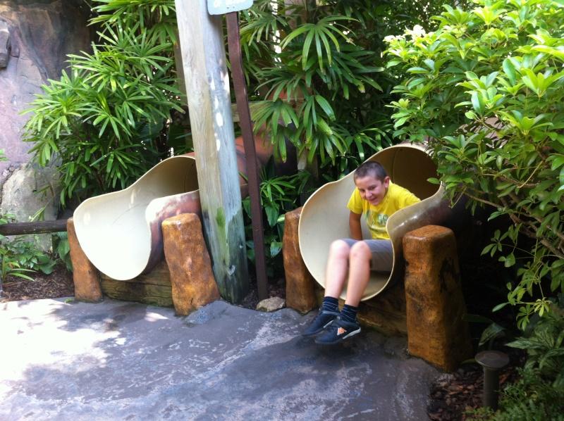 5 Auvergnats en Floride - Universal Busch Gardens et WDW Octobre 2013 - Page 3 Nokia_35