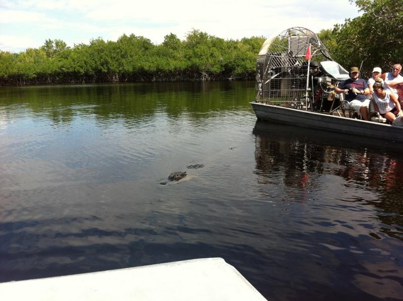 5 Auvergnats en Floride - Universal Busch Gardens et WDW Octobre 2013 - Page 4 Nokia_78