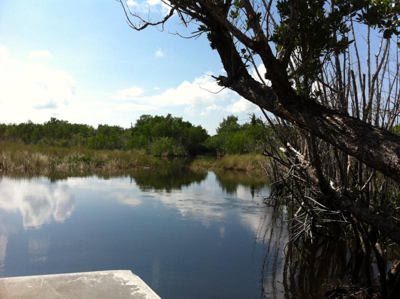5 Auvergnats en Floride - Universal Busch Gardens et WDW Octobre 2013 - Page 4 Nokia_88