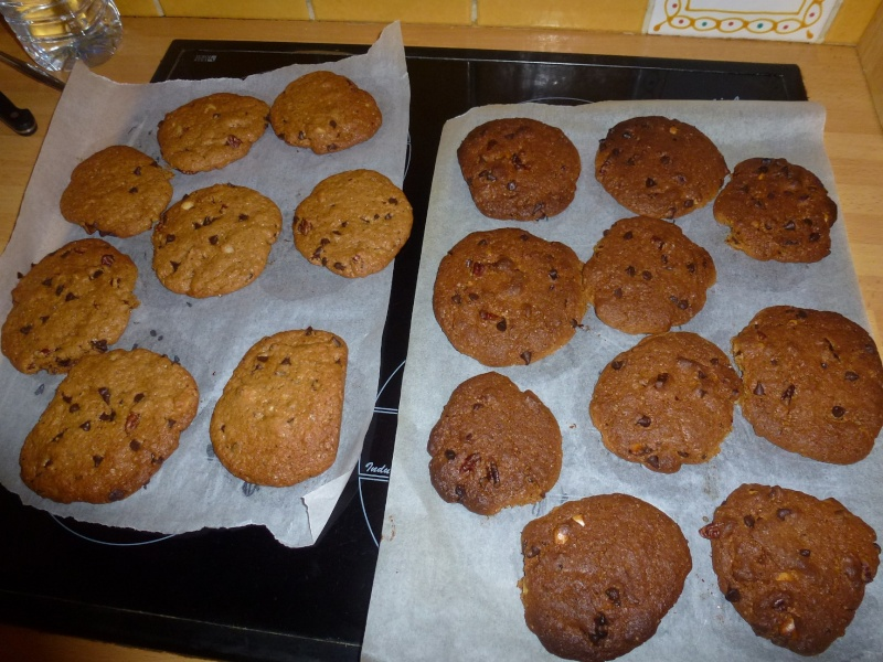 Cookies - Page 20 P1020611