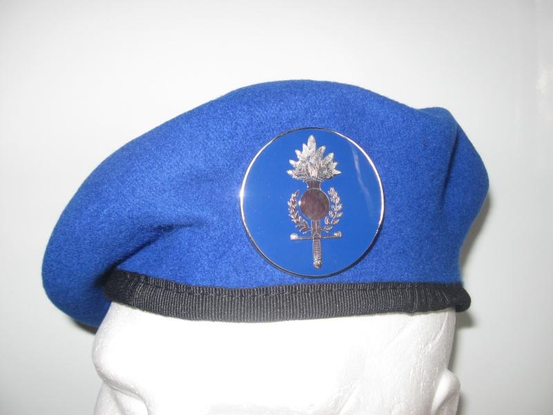 Les insignes de béret dans l'armée française Img_6513