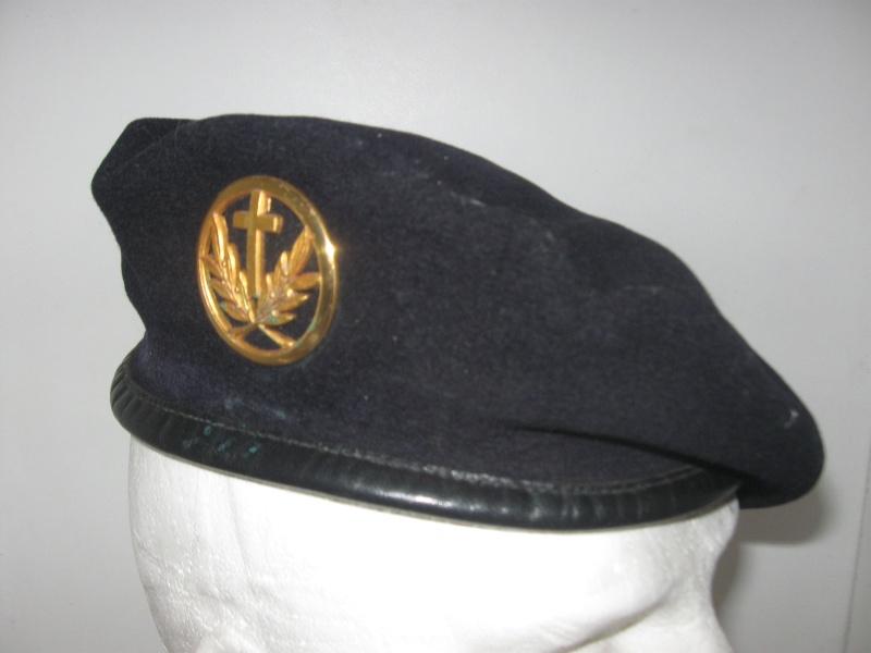Les insignes de béret dans l'armée française Img_6622