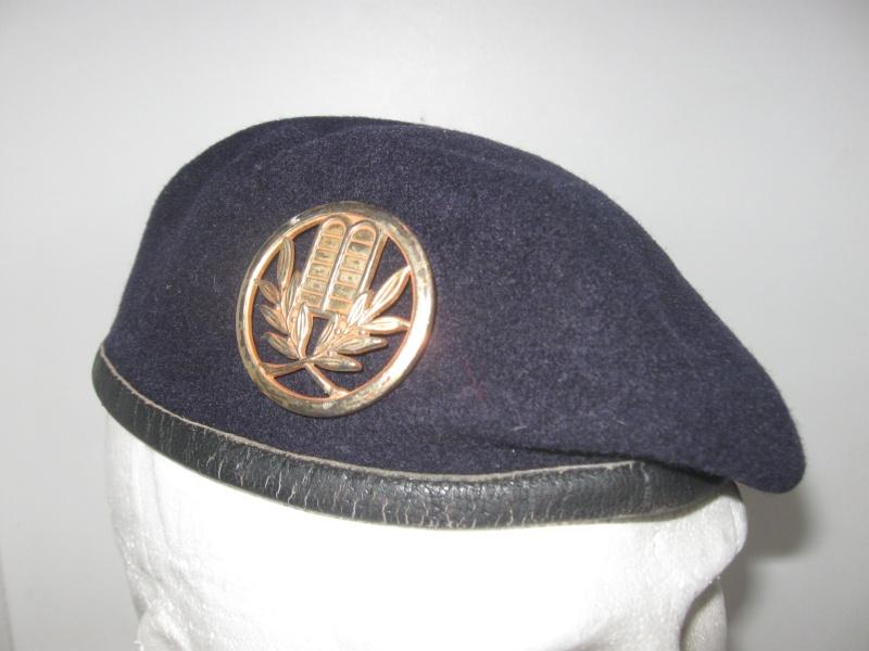 Les insignes de béret dans l'armée française Img_6623