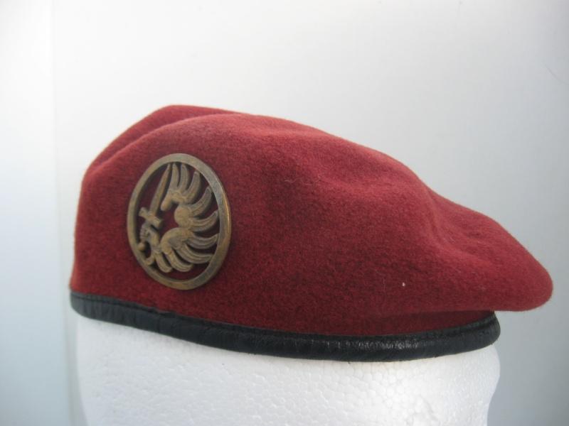 Les insignes de béret dans l'armée française Img_6710