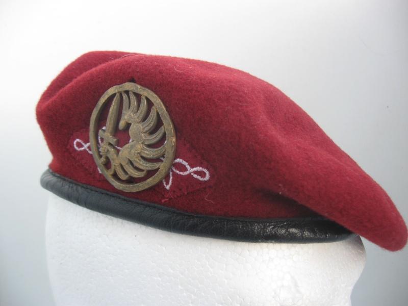 Les insignes de béret dans l'armée française Img_6711