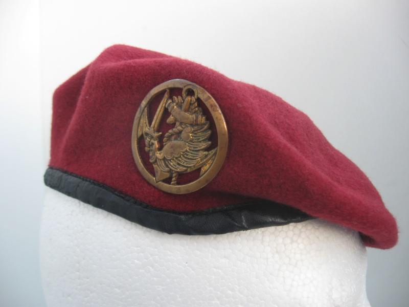 Les insignes de béret dans l'armée française Img_6713