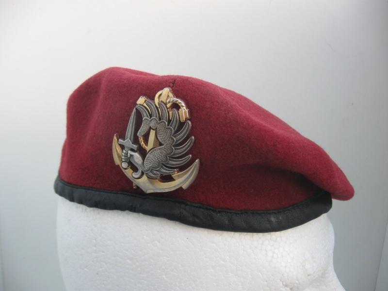 Les insignes de béret dans l'armée française Img_6714