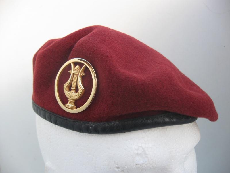 Les insignes de béret dans l'armée française Img_6718
