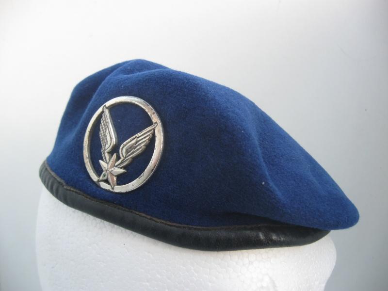 Les insignes de béret dans l'armée française Img_6719