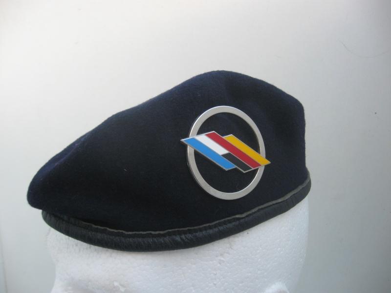 Les insignes de béret dans l'armée française Img_6720
