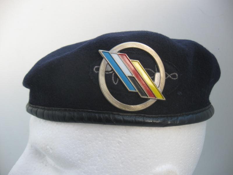 Les insignes de béret dans l'armée française Img_6721