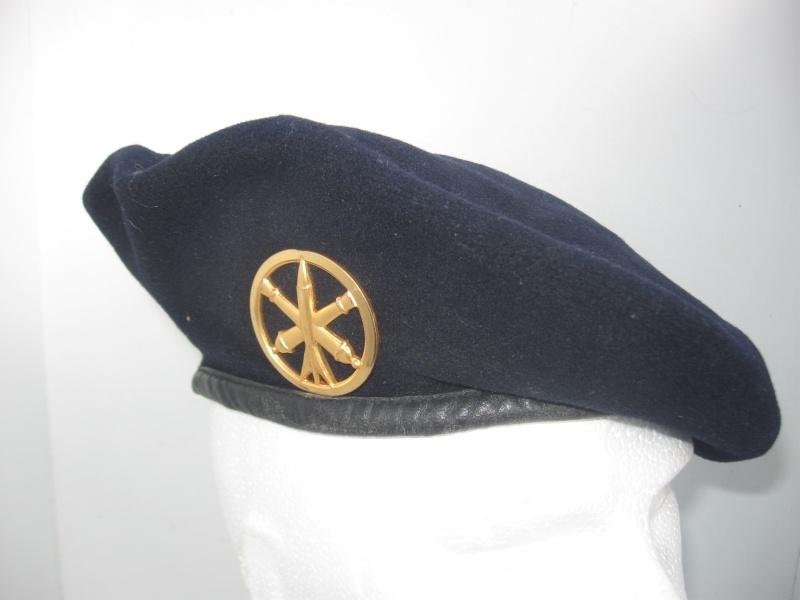 Les insignes de béret dans l'armée française Img_6722