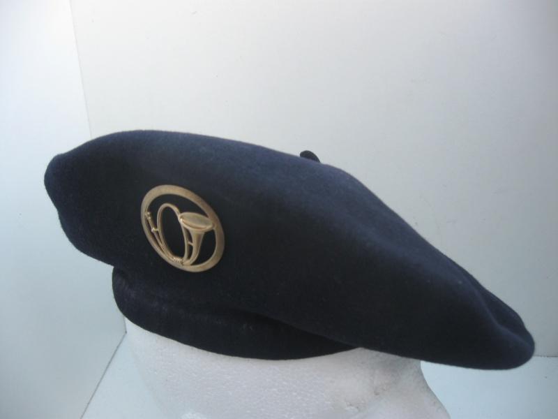 Les insignes de béret dans l'armée française Img_6723