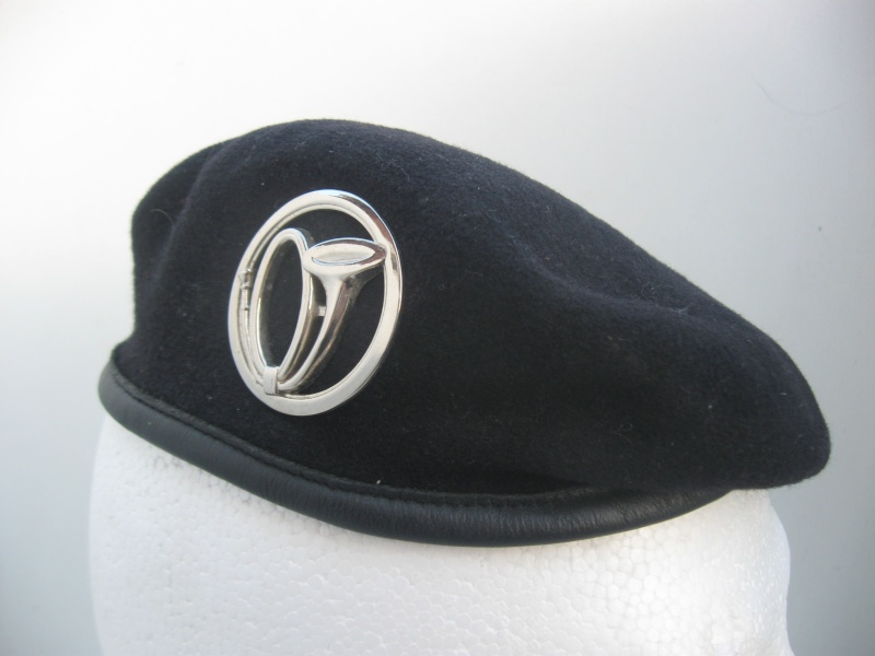 Les insignes de béret dans l'armée française Img_6724