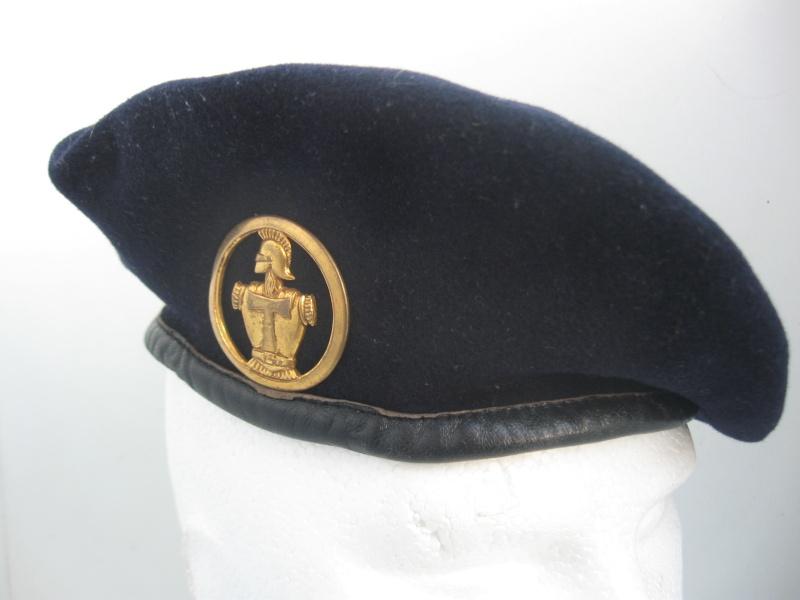 Les insignes de béret dans l'armée française Img_6725