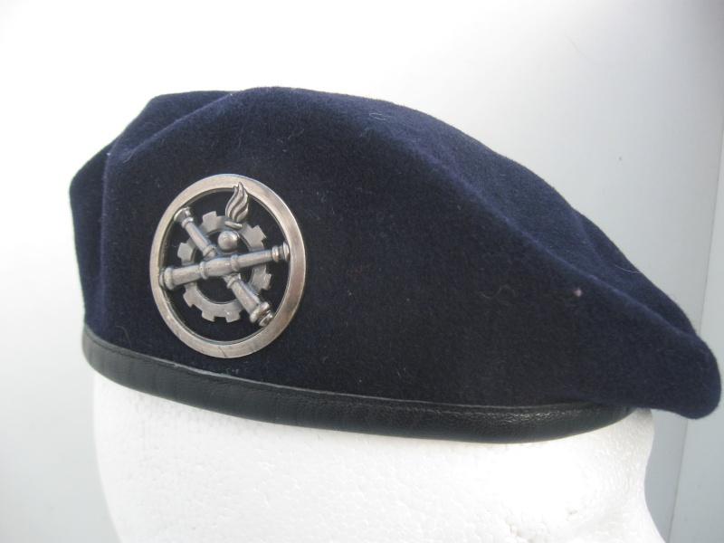 Les insignes de béret dans l'armée française Img_6730