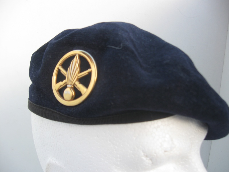 Les insignes de béret dans l'armée française Img_6732
