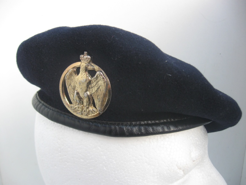 Les insignes de béret dans l'armée française Img_6734
